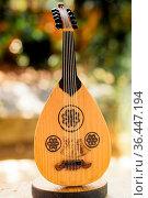 Classic stringed musical instrument Ud in view. Стоковое фото, фотограф Zoonar.com/Turgay Koca / easy Fotostock / Фотобанк Лори