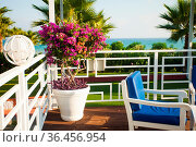 Summer cafe terrace with seaview, focus on the flowers. Стоковое фото, фотограф Zoonar.com/Oksana Shufrych / easy Fotostock / Фотобанк Лори