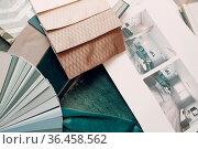 Interior designer woman at work. Design color palette and interior... Стоковое фото, фотограф Zoonar.com/Max / easy Fotostock / Фотобанк Лори