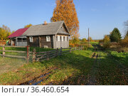 Деревня Гижино. Республика Карелия (2020 год). Стоковое фото, фотограф Дмитрий Шишков / Фотобанк Лори