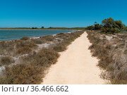 Trekking trail close to lake Thetis in the Nambung National Park,... Стоковое фото, фотограф Zoonar.com/Alexander Ludwig / easy Fotostock / Фотобанк Лори