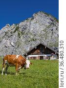 Beim südseitigen Aufstieg zur Benediktenwand kommt man an der idyllischen... Стоковое фото, фотограф Zoonar.com/Eder Christa / easy Fotostock / Фотобанк Лори