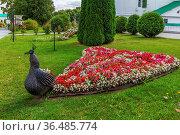 Peacock tail flower bed, Nizhny Novgorod, Russia. Стоковое фото, фотограф Zoonar.com/Boris Breytman / easy Fotostock / Фотобанк Лори