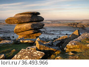 The Cheesewring, a granite tor situated on Stowe's Hill, Minions, Bodmin Moor, Cornwall, UK. February 2021. Стоковое фото, фотограф Ross Hoddinott / Nature Picture Library / Фотобанк Лори