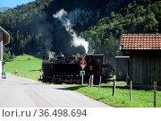 Bregenzerwaldbahn, waelderbaehnle, reuthe, dampflok, dampflokomotive... Стоковое фото, фотограф Zoonar.com/Volker Rauch / easy Fotostock / Фотобанк Лори