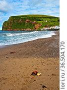 Am Strand im Fischerdorf Pennan, Aberdeenshire, Schottland, Grossbritannien... Стоковое фото, фотограф Zoonar.com/Pant / age Fotostock / Фотобанк Лори