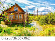 Old wooden abandoned house in a swamp at the countryside in summer... Стоковое фото, фотограф Zoonar.com/Alexander Blinov / easy Fotostock / Фотобанк Лори