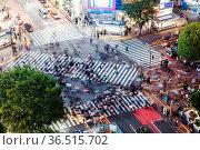 TOKYO, JAPAN - MAY 12, 2019 - Night time at Shibuya Crossing which... Стоковое фото, фотограф Zoonar.com/Chris Putnam / easy Fotostock / Фотобанк Лори