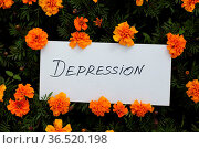 White sheet of paper with the word Depression on flower background. Стоковое фото, фотограф Zoonar.com/Max / easy Fotostock / Фотобанк Лори