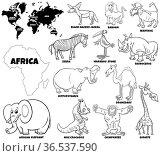 Black and white educational cartoon illustration of African animal... Стоковое фото, фотограф Zoonar.com/Igor Zakowski / easy Fotostock / Фотобанк Лори