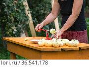 Woman peels apples using an apple peeler device on the orange table in the garden. Стоковое фото, фотограф Георгий Дзюра / Фотобанк Лори