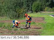 Moscow, Russia - Sept 06. 2021. Mosvodokanal workers check the sewer well in Zelenograd (2000 год). Редакционное фото, фотограф Володина Ольга / Фотобанк Лори