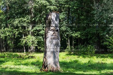 Владимирская область. Муромцево. Замок Храповицкого. Скульптура вырезанная из дерево. Древний идол