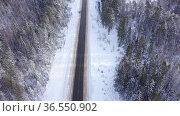 Direct road through the winter forest. View from above. Стоковое видео, видеограф Яков Филимонов / Фотобанк Лори