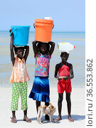Portrait of three girls, with containers on head  to collect water, and dog, Orango Island, Bijagos UNESCO Biosphere Reserve, Guinea Bissau, February 2015. Стоковое фото, фотограф Enrique Lopez-Tapia / Nature Picture Library / Фотобанк Лори