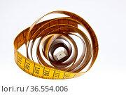 ZON-1997461. Стоковое фото, фотограф Zoonar.com/Heiko Eschrich / age Fotostock / Фотобанк Лори