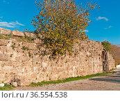 Bruecke ueber den Eurymedon Mauer der antiken Bruecke mit eingewachsenem... Стоковое фото, фотограф Zoonar.com/Wieland Hollweg / age Fotostock / Фотобанк Лори