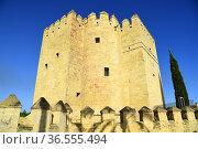 Torre de la Calahorra in Cordoba Andalusia,Spain. Стоковое фото, фотограф Frederic Soreau / age Fotostock / Фотобанк Лори