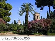 Jardins del Paraiso garden with church of Santa Maria de Alhambra... Стоковое фото, фотограф Frederic Soreau / age Fotostock / Фотобанк Лори