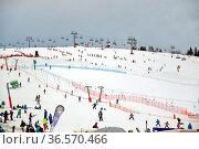 Das Skigebiet am Feldberg/Deutschland am Sonntag, 24.01.2016. Hier... Стоковое фото, фотограф Zoonar.com/Joachim Hahne / age Fotostock / Фотобанк Лори