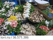 Puesto de venta de hongos en el Borough Market, Southwark, Londres... Стоковое фото, фотограф Eduardo Dreizzen / age Fotostock / Фотобанк Лори
