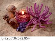 Stillleben mit Kerze, Lavendel und Anemone auf verwittertem Holz. Стоковое фото, фотограф Zoonar.com/Petra Schüller / easy Fotostock / Фотобанк Лори