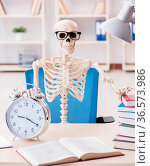 The student skeleton preparing for exams. Стоковое фото, фотограф Zoonar.com/Elnur Amikishiyev / easy Fotostock / Фотобанк Лори