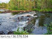 Threshold  Stol on the Pongoma River, North Karelia, Russia. Стоковое фото, фотограф Сергей Трофименко / Фотобанк Лори
