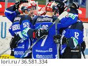 Kollektiver Jubel der WildWings nach dem Sieg gegen München, DEL ... Стоковое фото, фотограф Zoonar.com/Joachim Hahne / age Fotostock / Фотобанк Лори