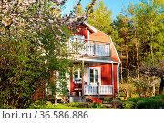 Typisch rotes Holzhaus in Schweden mit blühendem Flieder im Frühling... Стоковое фото, фотограф Zoonar.com/Kai Schirmer / easy Fotostock / Фотобанк Лори
