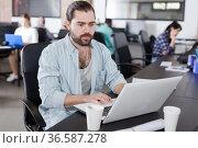 Bearded man working on laptop. Стоковое фото, фотограф Яков Филимонов / Фотобанк Лори
