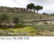 Manuel Olaya. Rambla de Sugel. Almansa. Albacete Castilla-La Mancha... Стоковое фото, фотограф Antonio Real / age Fotostock / Фотобанк Лори