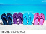 Eine Reihe bunter Flip Flops stecken im Sand am Badestrand. Стоковое фото, фотограф Zoonar.com/Thomas Klee / easy Fotostock / Фотобанк Лори