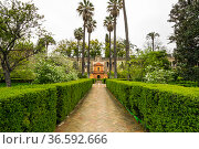 View of the garden in the Alcazar palace (2019 год). Стоковое фото, фотограф Юлия Белоусова / Фотобанк Лори