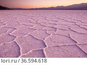 Badwater, the lowest point in the the USA and the hottest place on earth, Death Valley National Park, California, USA. Стоковое фото, фотограф Inaki Relanzon / Nature Picture Library / Фотобанк Лори