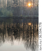 Setting sun through trees reflected in pond, Vendeuil, Picardy, France, December 2020. Стоковое фото, фотограф Pascal  Tordeux / Nature Picture Library / Фотобанк Лори