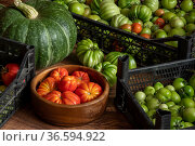 Harvest of fresh tomatoes in crates, pumpkin and basket with hazelnuts stacked on the floor. Стоковое фото, фотограф Евгений Харитонов / Фотобанк Лори