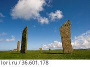 Neolithische KultstŠtte, Die stehenden Steine von Stennes, Stromness... Стоковое фото, фотограф Zoonar.com/GUENTER LENZ / age Fotostock / Фотобанк Лори