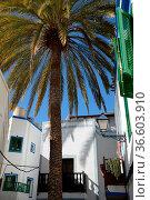 Puerto de Mogan,mogan, altstadt, gran Canaria,kanaren, kanarische... Стоковое фото, фотограф Zoonar.com/Volker Rauch / easy Fotostock / Фотобанк Лори