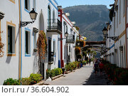 Blumen, Puerto de Mogan,mogan, altstadt, gran Canaria,kanaren, kanarische... Стоковое фото, фотограф Zoonar.com/Volker Rauch / easy Fotostock / Фотобанк Лори