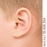 Close up of baby ear. Стоковое фото, фотограф Zoonar.com/Ruslan Nassyrov / easy Fotostock / Фотобанк Лори