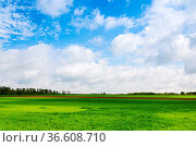 Landscape with clouds in spring. Стоковое фото, фотограф Zoonar.com/Ewald Fr / easy Fotostock / Фотобанк Лори