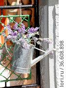 Gießkanne, Blumen, blume, malerisch, pittoresk, blumenschmuck, deko... Стоковое фото, фотограф Zoonar.com/Volker Rauch / easy Fotostock / Фотобанк Лори