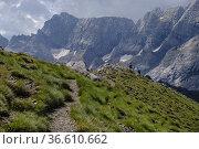 Hill of Hourqueta d'Allanz, Pyrenees National Park, Hautes-Pyrenees... Стоковое фото, фотограф Tolo Balaguer / age Fotostock / Фотобанк Лори