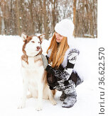 Happy young woman in the winter park with huskies dog. Стоковое фото, фотограф Zoonar.com/Dasha Petrenko / easy Fotostock / Фотобанк Лори