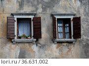 Fenster , Vrsar, Kroatien, haus, fassade, hausfassade, istrien, altbau... Стоковое фото, фотограф Zoonar.com/Volker Rauch / easy Fotostock / Фотобанк Лори