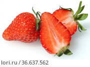 Erdbeere, Fragaria x ananassa, Beerenobst, Стоковое фото, фотограф Zoonar.com/Manfred Ruckszio / age Fotostock / Фотобанк Лори