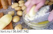 Preparation of homemade vegetable pancakes, grating raw potato. Стоковое видео, видеограф Яков Филимонов / Фотобанк Лори