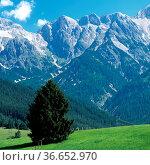 Berchtesgadener Alpen, Steinernes Meer, Salzburgerland, Hochkoenigmassiv... Стоковое фото, фотограф Zoonar.com/Manfred Ruckszio / age Fotostock / Фотобанк Лори