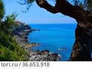 Italien, Italia, Sizilien, bei Domstadt - Cefalu, Mittelmeer, Felsküste... Стоковое фото, фотограф Zoonar.com/Bildagentur Geduldig / age Fotostock / Фотобанк Лори